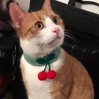 Moda Pet Örme Tasmaları El Yapımı Kedi Yaka Kiraz Tasarımcısı Eşarp Sevimli Köpek Önlüğü Eşarp Pet Aksesuarları