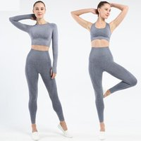 2 Piece Set Mulheres Seamless Vital Set Yoga Workout Clothes manga comprida Academia Top Curto shirt + alta Suit cintura Gym Leggings Sports