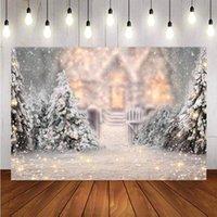 Arka Plan Malzeme Poçasyonu Kış Kar Tanesi Noel Ağacı Flaş Dekorasyon Arka Planında PO Studio Backdrop Pocall