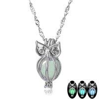 Glow In The Dark Pendant Colares Cadeia Colares Charme incandescência Owl Colar Mulheres Collares Luminous Jóias