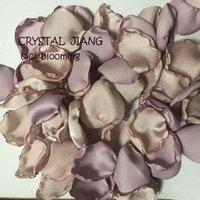 Yumuşak Kayısı Ve Orkide Renkli Gül Yapraklı masa dekor Yapraklı İçin Düğünler Bebek Duşlar Çiçek Kız Rose Petal
