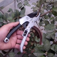 20cm Ratchet horticulture garniture végétale coupée à la main Sécateur Orchard élagueur Outil de jardin Sécateur Arbuste Scissor enclume Direction