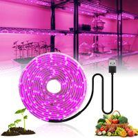 LED crece la luz de espectro completo USB 5V crece la luz de tira del LED 2835 Phyto lámparas para plantas de invernadero cultivo hidropónico 0,5 M 1M 2M 3M