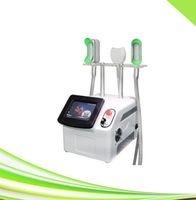 지방 동결 (360) 냉동 요법의 냉동 제거 이중 턱을 한 Cryolipolysis 슬리밍 기계