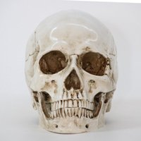 Skull Statues Resin Sculptures Halloween Home Decor Decorative Craft Skull Size 1:1 Model Life Replica High Quality