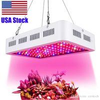 1000w LED Crescer Lamp Full Spectrum com Double chips 10W crescente Lâmpadas para Estufa de Plantas de interior cultivo hidropônico em Tent Grow
