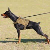 تسخير الكلب تنفس شبكة لينة الحشو تسخير الكلب قابل للتعديل التدريب الصدرية الملابس في الهواء الطلق الحيوانات الأليفة الملحقات