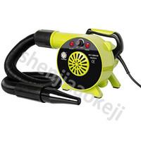 Séchoirs à main PET Dog Sèche-cheveux Sèche-cheveux 2500W Toilettage Low Bruit 220V / 110V / 230V / 240V 1PC