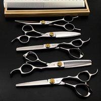 Ciseaux à cheveux 6 Structure de salon professionnel Set de coiffure Coup de coiffure Coup de coiffe Outils de coiffure