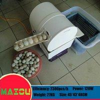 Однорядный двухрядный электрический яичный стиральная машина для стиральной машины Куриная утка для утилизации яиц для уборки яиц для яичника 2300 шт. / H