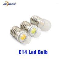 Amywnter T15 E14 Lampade a LED 0,5 W 1W Lampadario di cristallo 12V 24V 60 V Spotlight Cereale Bulbs Pendente Frigorifero frigorifero Frigorifero1