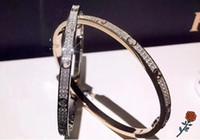 New Year Luxus Edelstahl Gypsophila Armband Schmale Liebe Charme Weißgold Rose Gold Voll Diamant Doppelreihe Diamant Zwei Reihen Diamant B