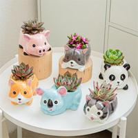 Seramik hayvan saksı seramik vazo ekici masaüstü süsler ev dekor bahçe etli pot bitki pot