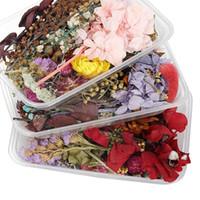 1box mélange de mélange style desséché de fleurs séchées décoration naturel autocollant floral beauté nage art décalques époxy moule bricolage bijoux h jllvya