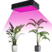 LED Croissance de la plante Lumière 10W Spectrum complet 3030 Lampe Perle Perle Lampe à commande unique Lampes noires
