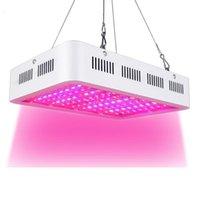 أدى النمو ضوء 1000W مزدوجة رقاقة كامل الطيف للداخلية Aquario المائية زهرة النبات LED نمو الخفيفة عالية الإنتاجية