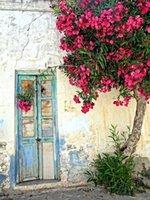 الأزرق باب خشبي التالفة خلفيات قرميد جدار الفينيل التصوير في الهواء الطلق الخلفيات زهور شجرة صور بوث الأطفال للاستوديو الزفاف