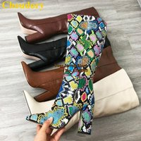 Choudory Brown Stone Padrão Snakeskin Knee Botas Chunky Heels Pointed Toe Alta Botas Sexy Multi-Python Vestido Alto Sapatos1