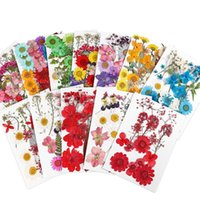 Appuyez sur de vraies fleurs pour Candle Nail Art Décalcomanies Petites Fleurs séchées Scrapbooking Decoration de fleur sèche Accueil Résine Moule QYLTFZ