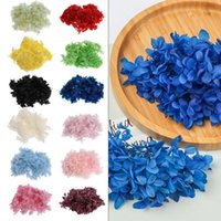 1Bag Natural Fresh Preserved Flowers Dried Hydrangea Flower ...