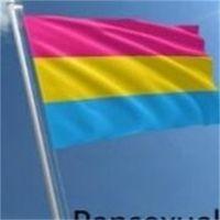 90x150 cm Bisexuelle Flagge lesbisch Gay Pride Polyester Rainbow Flaggen Festival Party Banner Dekorationen Heißer Verkauf 4 8qt B2