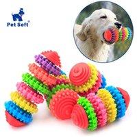 Hundespielzeug Kauen Haustier Kauknochen Spielzeug Sauber Zähne Bunte Gummiwelpen Dental Kinderkrankheiten Gesundes Gums Spiel Training Holen Sie Spaß