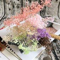 Dekoratif Çiçekler Çelenkler 4G Babysbreath Doğal Taze Kurutulmuş Korunmuş Çiçekler, DIY Ebedi Yaşam Malzemesi için Gerçek Bebek Nefes, Ev Decor1