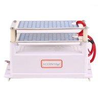 Oczyszczacze powietrza 220 V 10G / h Przenośny ceramiczny generator ozonowych Dual zintegrowany płyta oczyszczacz wody1