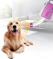 Elektrikli Saç Fırçalar Köpek Kurutma Makinesi Küçük Çok Fonksiyonlu Pet Kedi Fluff Puf Bakım Kış Yaz Ev Mini Blower Sıcak Rüzgar Hızlı Blowdrye