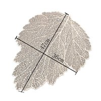 Placemat Dining Table Coasters Leaf Simulation Plant PVC Coffee Cup Table Mats Hollow Kitchen Christmas Home Decor Gifts GWE6634