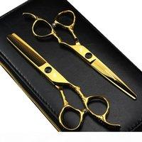 Forbici per parrucchieri da 6,0 pollici Giappone 440C con vite per barbiere o uso domestico