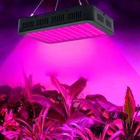 Melhor 1000W 100 * 10W Spectrum 3030 Lâmpada de lâmpada Lâmpada de planta de controle único preto material premium crescer luzes