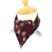 الرجال الرفاد العلاقات الكلاسيكية cravat ascot للرجال scrunch الذاتي النمط البريطاني رجل نبيل بوليستر الرقبة التعادل الجاكار cravats1