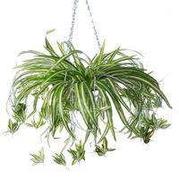 Flores decorativas guirnaldas 3 cabezas artificial flor de bracketplant clorófito orquídeas ratán pared colgando plantas de seda tienda casero decoración1