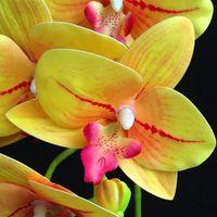 PU Phalaenopsis Real сенсорный бабочки Orchid Поддельные Орхидеи 5 цветов Искусственный цветок орхидеи для украшения венчания оптовой