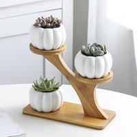Sempladores de macetas de estilo nórdico para suculentas Planta Planta Pottín de maceta Búho de cerámica Papel de calabaza Pote de bambú Pot Y200723