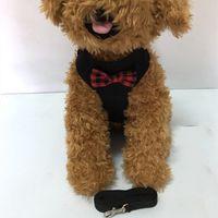 في الهواء الطلق كلب يسخر الكلاسيكية نمط الأزياء تعديل الحيوانات الأليفة تسخير المقاود لطيف تيدي المقود طوق البدلة الصغيرة الكلب طوق الملحقات