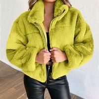 Zarif Faux Ceket Kadın Sonbahar Kış Sıcak Yumuşak Fermuar Kürk Ceket Kadın Peluş Palto Rahat Giyim
