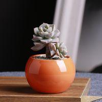 Carny Botany Flowerpot Mini creativo Suculento Potes Bola de color blanco Circular Cerámica Cuenca Flores y plantas Potted Plant 3 3GH P1