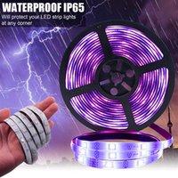 Conjunto de tiras de luz de plástico 150 LED 12V-5050 RGB IR44 con control remoto IR (placa de lámpara blanca) Entrega rápida