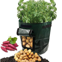 زراعة النباتات تنمو حقيبة أكياس للبطاطا الطماطم الجزر النباتية الأخرى، PE تنمو أكياس الثقيلة سميكة مع مقابض