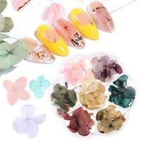 Pegatinas calcomanías 1 caja moda 3d flores secas hoja decoración de uñas gradiente pétalo seco etiqueta floral acrílico arte joyería uv gel