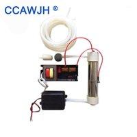 Purificatori d'aria 220V / 110V Generatore di ozono in silicube 2G / H per purificazione AND AND ACQUA 1 Set Avvia Accessoriario opzionale +