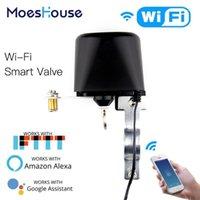 WiFi Smart Smart Automatisation Contrôle de la vanne de la vanne pour le contrôle vocal de gaz ou de l'eau avec Alexa Echo Google Home1