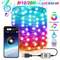16 millions de couleurs Smart app Bluetooth Control RVB Fairy String Light 5m / 10m / 20m 50-200 LED Etanche USB Cuivre Filces de cuivre