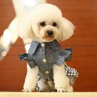 개 여자를위한 애완 동물 봄 카우보이 옷 작은 중간 개 거품 Bowknot 치마 귀여운 데님 스커트 옷 일치