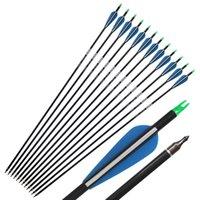 """31 """"Spine de flèche de carbone 340 avec flèche de carbone de plumes bleue pour une arrow composé arrow Pratique / Chasse"""