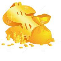 AMI, c'est un lien rapide pour payer les frais supplémentaires et la boîte à chaussures, DHL ou EMS Freight, etc. DE332