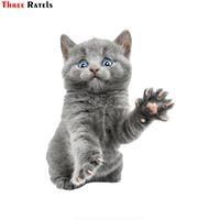 Drie rANTELS FTC-672 # 14x17.6cm verrassing Cat Kitty Auto Stickers op Motorfiets DIY Vinyl Decal Sticker Bom Styling