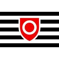 Propriété drapeau bannière 3x5 FT 90x150cm Festival de Sports Party 100D Polyester Intérieur Extérieur Drapeaux imprimés Cadeaux et oriflammes